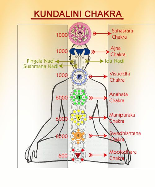 kundalini yoga retreat courses in rishikesh india