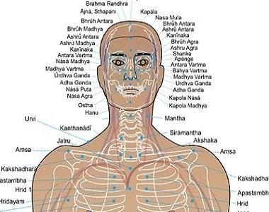 ayurveda course in rishikesh
